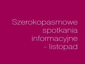 Listopadowe spotkania szerokopasmowe w powiecie lubelskim i krasnostawskim